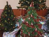 Organisation d'un Arbre de Noël